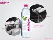 himalayan-natural-water