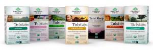 Tulsi_Group2.87fd18189404007e6c68cf6a50e4b91a